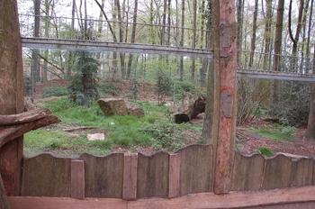 Zoo Osnabruck d50 2012 222