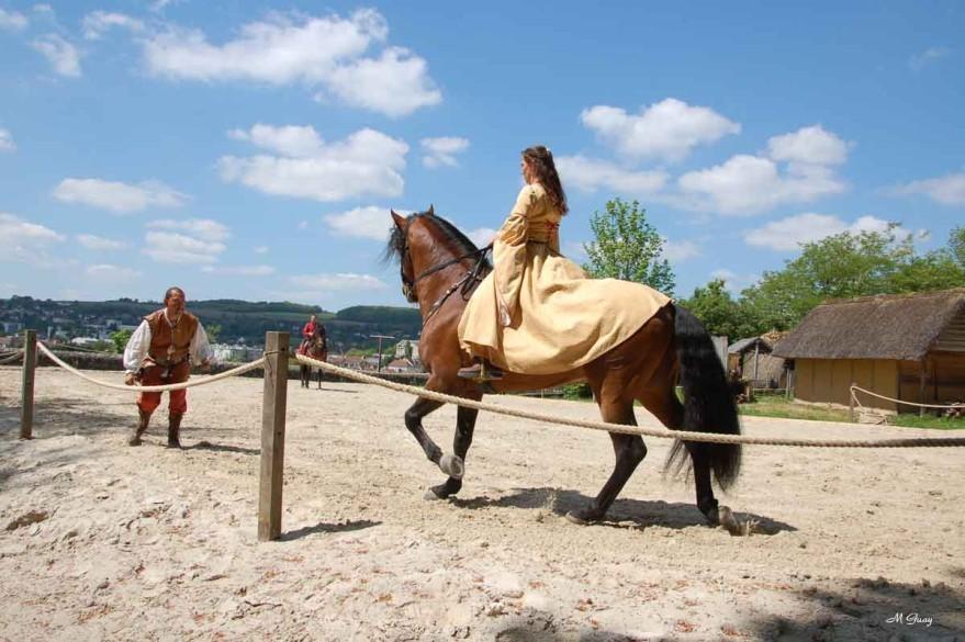 cheval-ennemi-9054.jpg