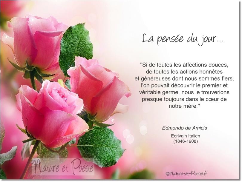 Citations En Images Le Coeur Dune Mère Le Monde De La