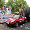 Caravane publicitaire Tour de France 2015