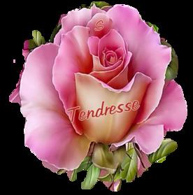 Papier**Tendresse fleurie**