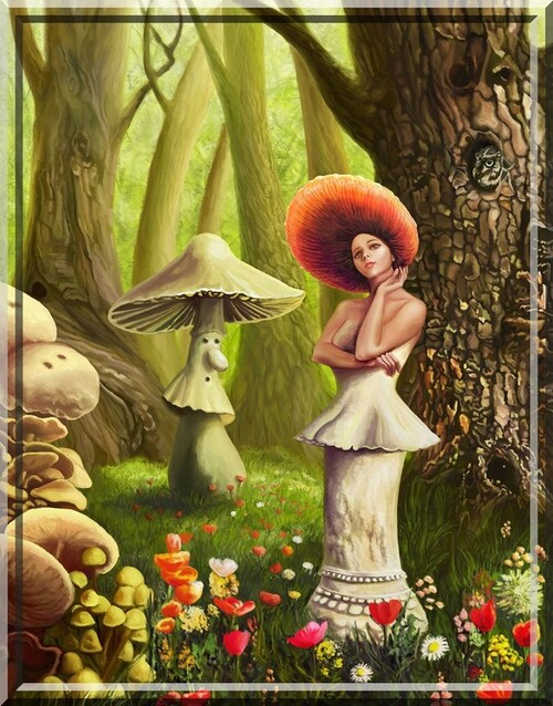 Belles illustrations automne