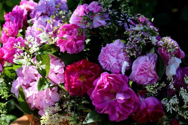 Les bouquets de Malmédy (1/3)