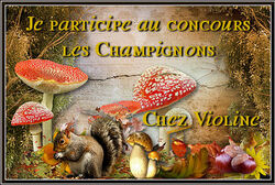 Concours Champignons 2014