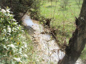 Le ruisseau de l'Herbettes