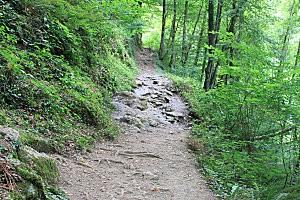 sentier d'Holzarte -19-