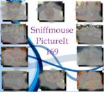 PictureIt 169 - Sniffmouse