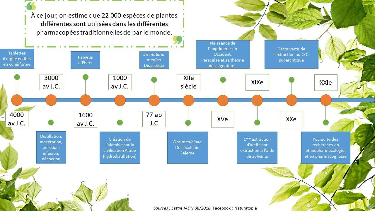 Pharmacopée (plantes) histoire succincte et shématique - Simon Lemesle, d'Astérale