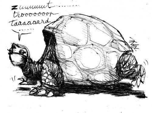 """""""Georges le Solitaire"""" vient de mourir: l'espèce s'éteint torutes géantes Galapagos"""