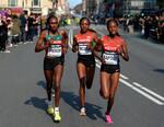 Championnat du monde 2014 du Semi Marathon au Danemark