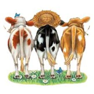 Les vaches et moi !.