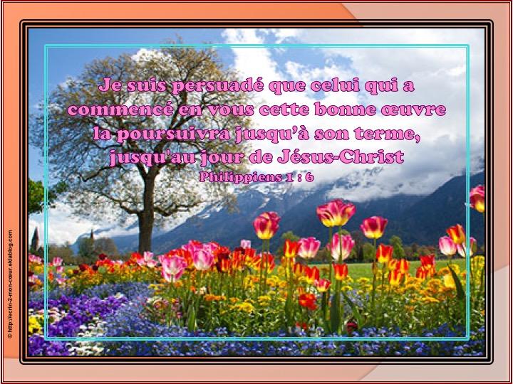 Celui qui a commencé en vous cette bonne oeuvre la poursuivra - Philippiens 1 : 6