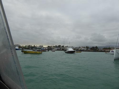 Départ d'Isabela, retour à Santa Cruz