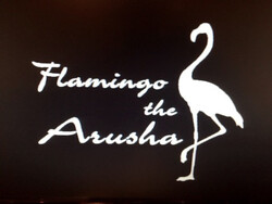 Flamingo the Arusha II