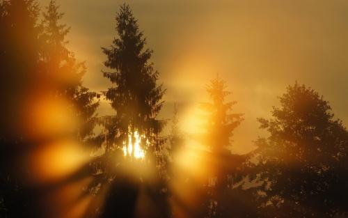Images de couchers ou levers de soleil.