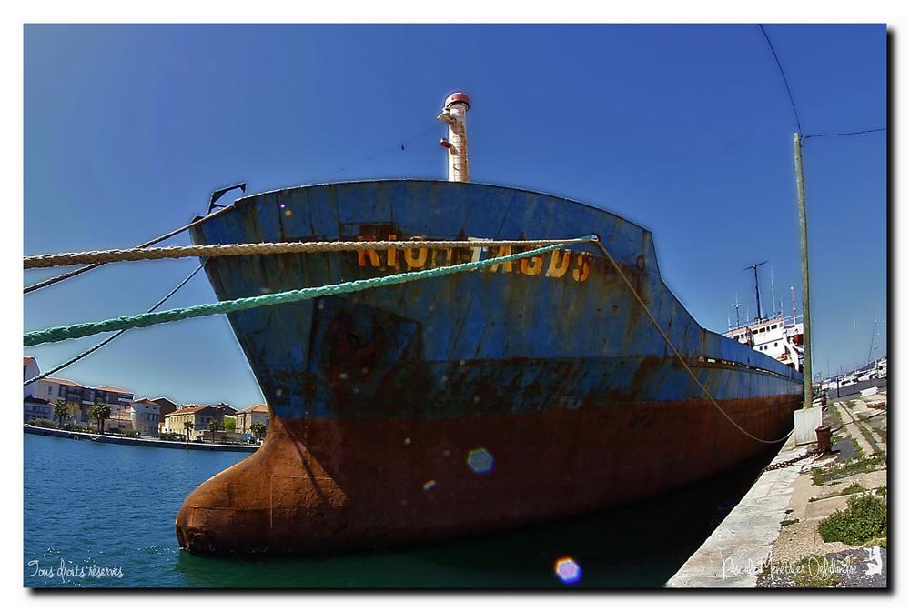 Dimanche 6 mars 2016 (journée bleue - Port de Sète