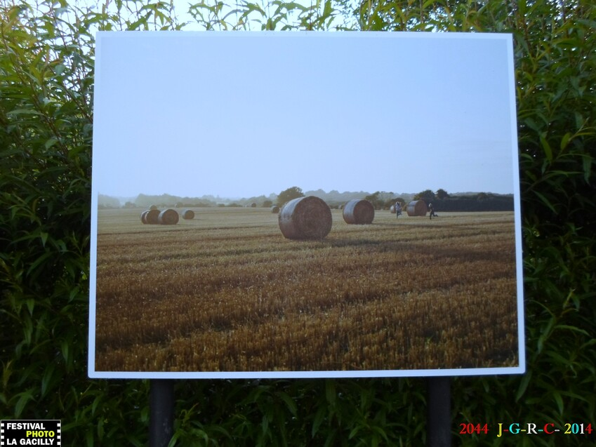 EXPOSITION PHOTO 2014  LA  GACILLY  56    08/06/2014