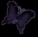 Tubes papillons