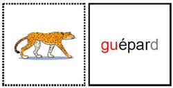 """Cartes nomenclature et lecture : son """"gu"""""""