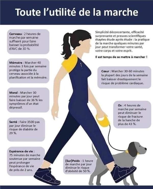 L'Utilité de la marche