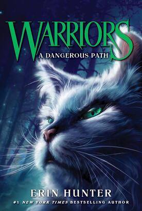 Sur le sentier de la guerre - A Dangerous Path