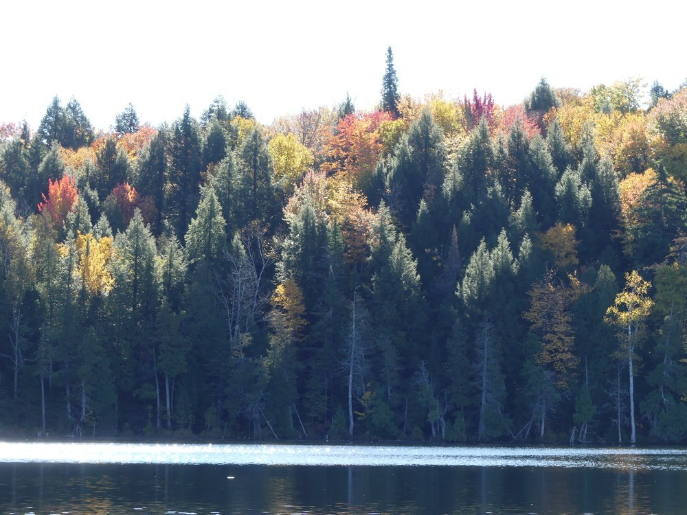 Rabaska à la pourvoirie du Lac Blanc au Canada...