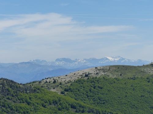 Le Contras (montagne de Lure)