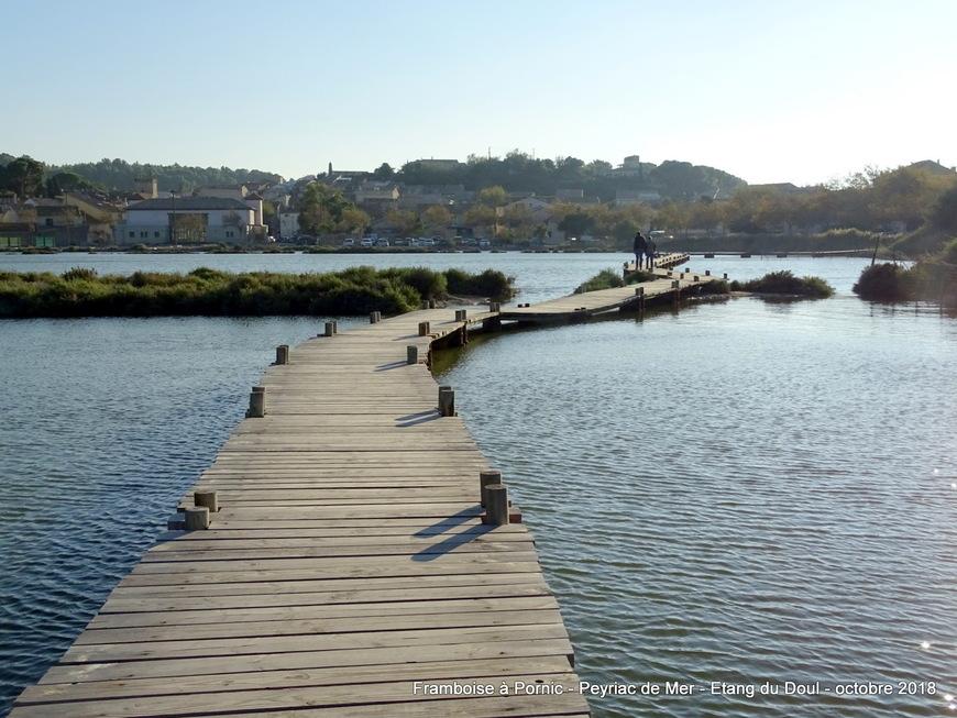 Peyriac de mer - Etang de Doul - Aude 2018