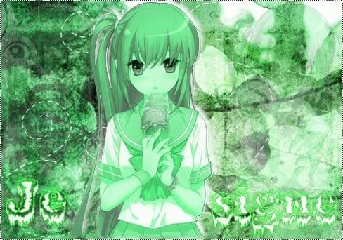 Kit : manga vert glace