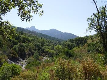 En descendant le vallon du Gratadis. Au fond, la silhouette caractéristique du massif du Cap Rouc