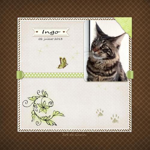 Un an Ingo