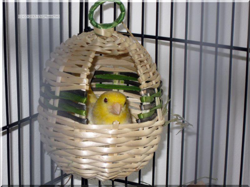 Surprise pour Pâques ???