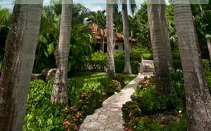 Jouer à Amazing tropical escape