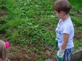 un peu de jardinage