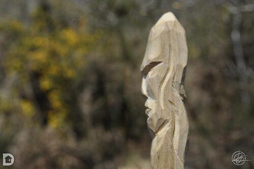Sculpture bois vert
