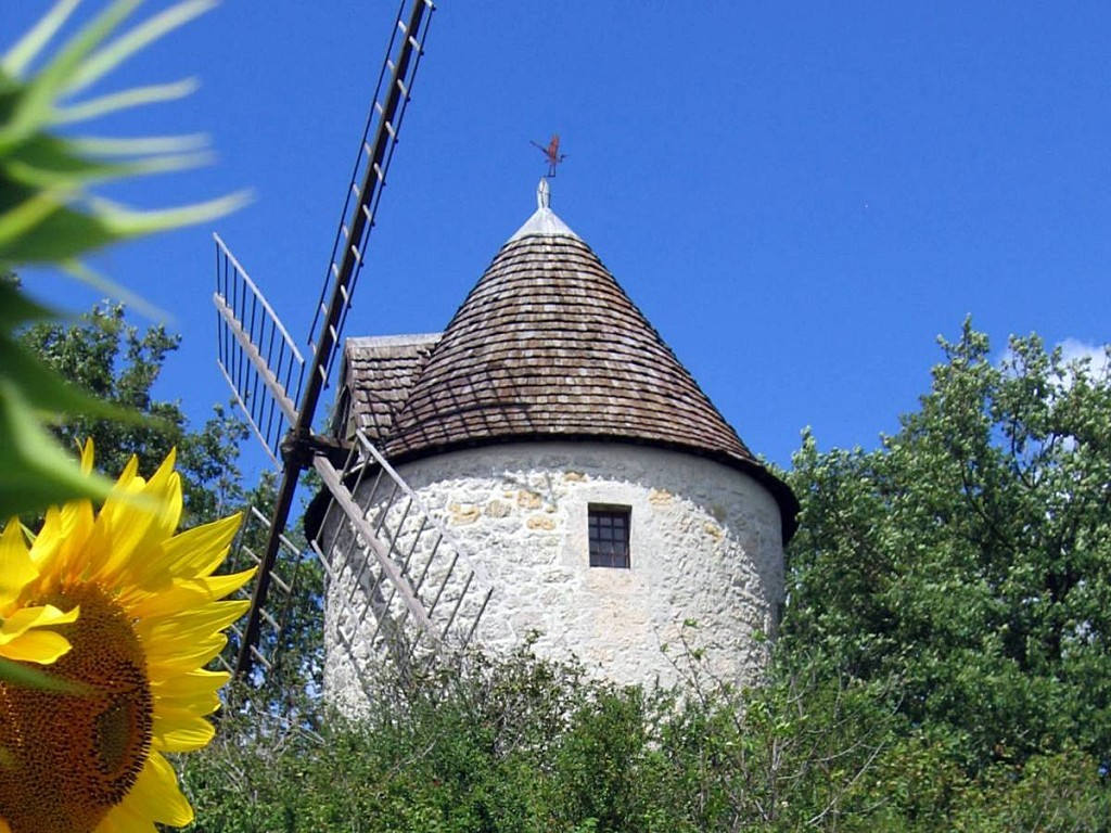 Moulin-au-tournesol.jpg