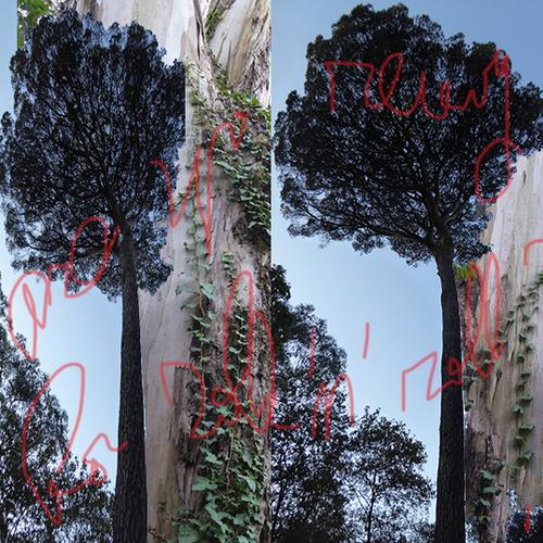 SAUDAD TREE - 3