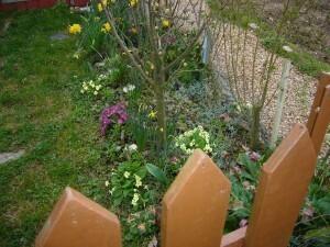 Jardins-familiaux-0010.jpg