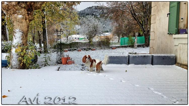Ce matin, la première neige!