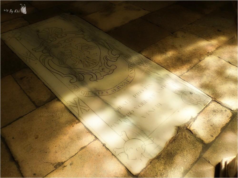 Arles ( Fr-13) ~ Cathédrale Saint Trophime ...