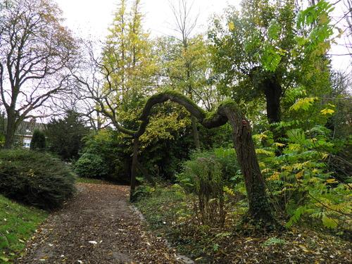 Au parc Bertin de Douai