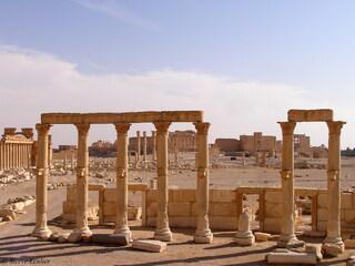 Palmyre : vestiges divers