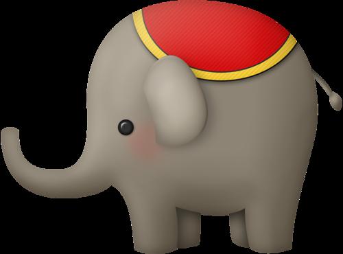 Eléphants (drôles) Série 7