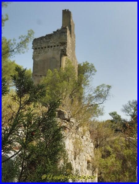 Les rives de la Durance, le château de St Esteve Janson