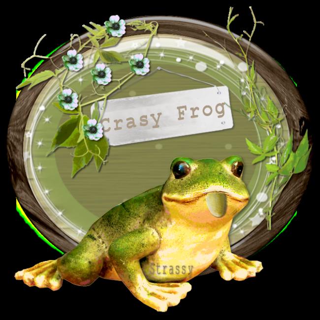 La fête à la grenouille - Chez Odyssey Graph