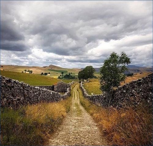 Les Détectives du Yorkshire - Julia Chapman