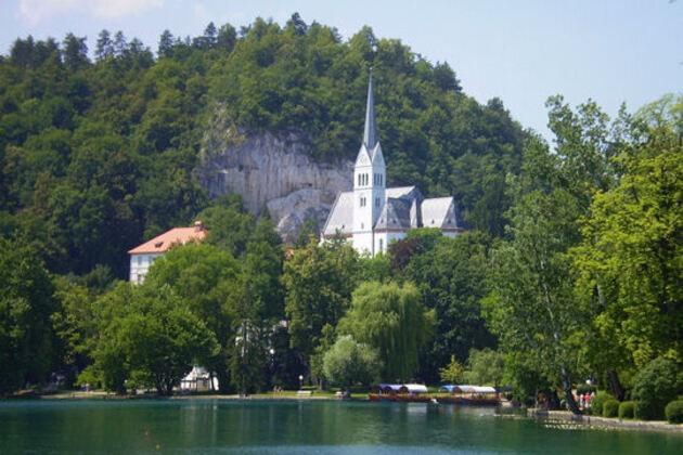 Les forêts de Slovénie
