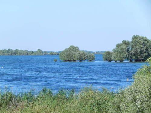 La forêt d'Orient et ses lacs