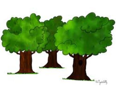 """Résultat de recherche d'images pour """"la forêt dessin """""""
