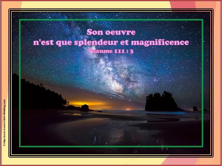 Son oeuvre n'est que splendeur - Psaumes 111 : 3